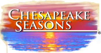 Chesapeake Seasons